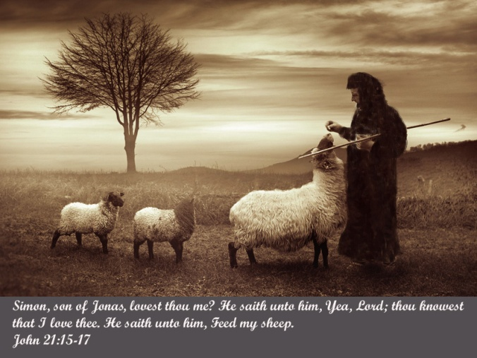 peter-feed-my-sheep